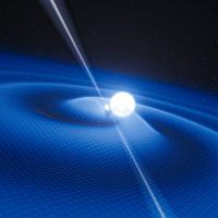 Pulsar and White Dwarf